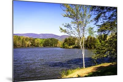 Beaver Creek-Alan Hausenflock-Mounted Photographic Print