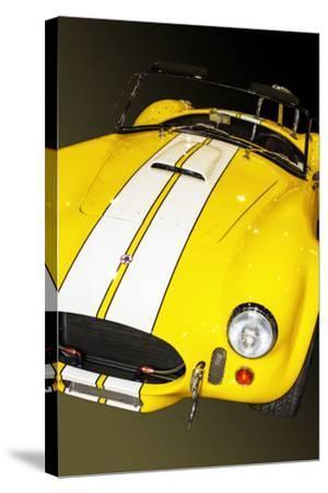 Classic Cobra I-Alan Hausenflock-Stretched Canvas Print