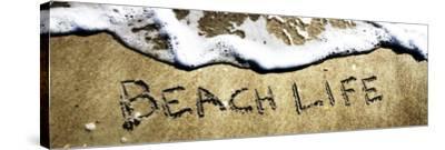 Beach Life-Alan Hausenflock-Stretched Canvas Print