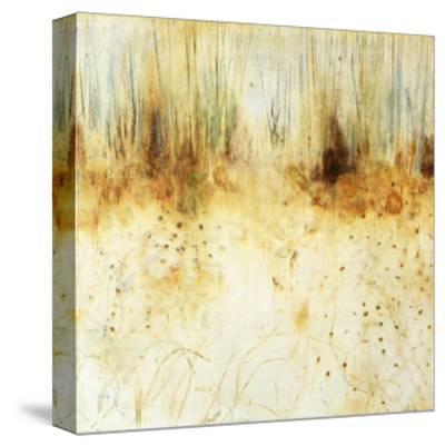 Winter Walk-BJ Lantz-Stretched Canvas Print