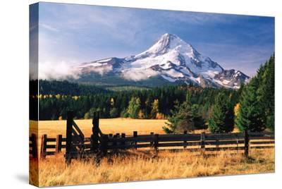 Mt. Hood X-Ike Leahy-Stretched Canvas Print