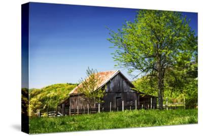 Old Backyard Barn-Alan Hausenflock-Stretched Canvas Print