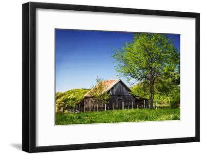 Old Backyard Barn-Alan Hausenflock-Framed Photographic Print