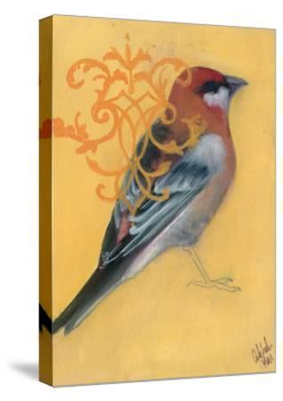 Bird Study I-Arielle Adkin-Stretched Canvas Print