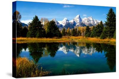 Grand Teton National Park XI-Ike Leahy-Stretched Canvas Print