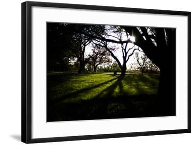 Spring Bench I-Beth Wold-Framed Photographic Print