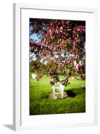Spring Bench II-Beth Wold-Framed Photographic Print