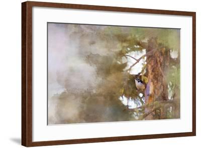 The Tiny Woodpecker-Roberta Murray-Framed Photographic Print