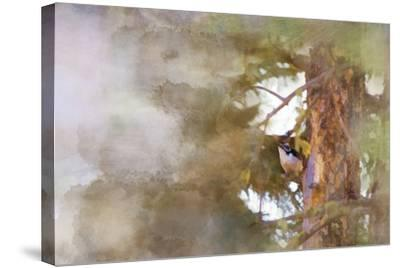 The Tiny Woodpecker-Roberta Murray-Stretched Canvas Print