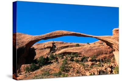 Arches National Park I-Ike Leahy-Stretched Canvas Print