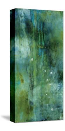 Winter Swim-BJ Lantz-Stretched Canvas Print