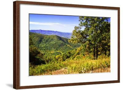 Approaching Autumn III-Alan Hausenflock-Framed Photographic Print