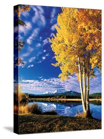 Sisters in Autumn II-Ike Leahy-Stretched Canvas Print