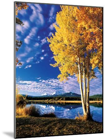Sisters in Autumn II-Ike Leahy-Mounted Photographic Print