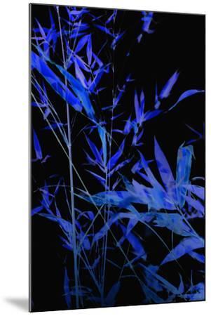 Bamboo at Night II-Karyn Millet-Mounted Photographic Print