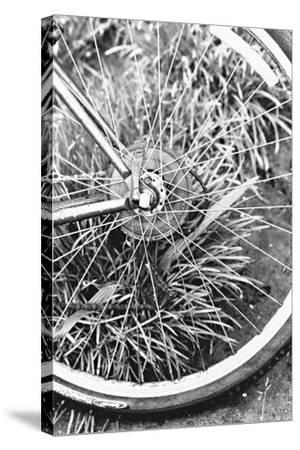 Bike Spoke-Karyn Millet-Stretched Canvas Print