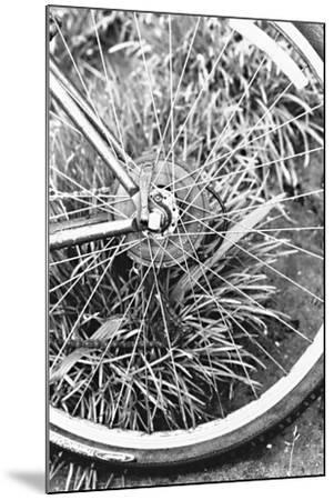 Bike Spoke-Karyn Millet-Mounted Photographic Print