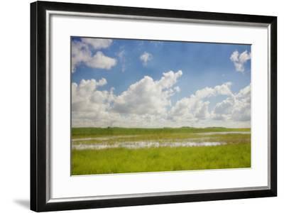 Prairie Slough in Summer-Roberta Murray-Framed Photographic Print