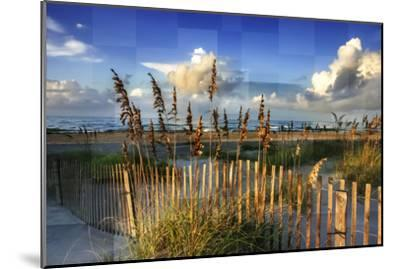 Morning on the Beach-Alan Hausenflock-Mounted Photographic Print