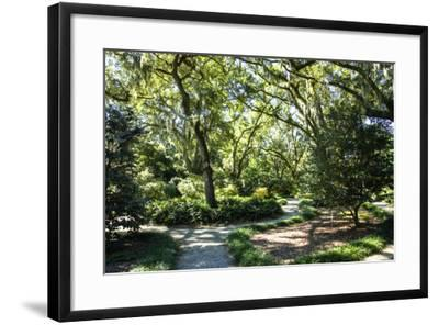 Garden by the Sea II-Alan Hausenflock-Framed Photographic Print