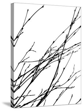 Dancing Branches IV-Monika Burkhart-Stretched Canvas Print