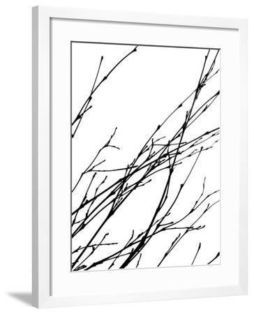 Dancing Branches IV-Monika Burkhart-Framed Photographic Print