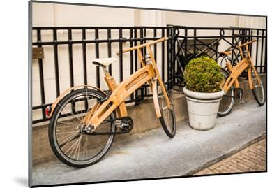 Wooden Bicycles in Amsterdam-Erin Berzel-Mounted Photographic Print