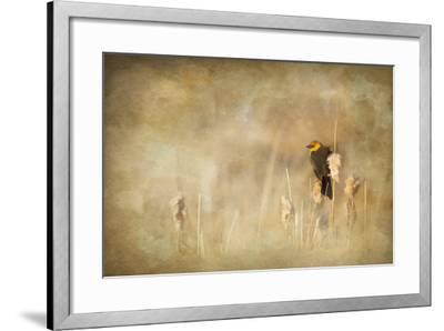 Marsh Singer-Roberta Murray-Framed Photographic Print