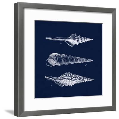 Shell Negative II-N^ Harbick-Framed Art Print