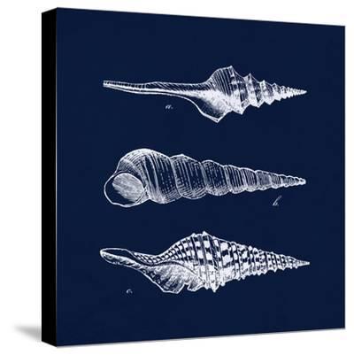 Shell Negative II-N^ Harbick-Stretched Canvas Print