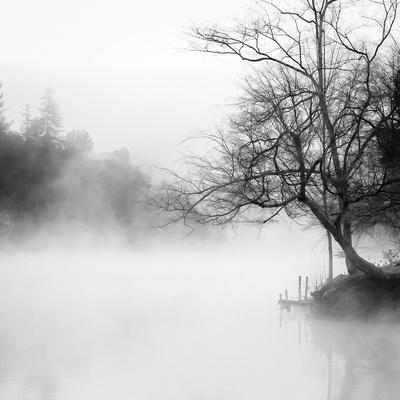 Fog on the Lake 1-Sally Linden-Framed Photographic Print