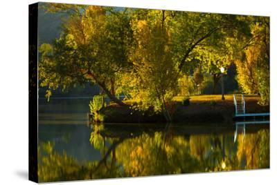 Fall at the Lake-Sally Linden-Stretched Canvas Print