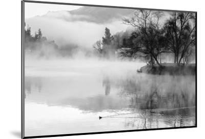 Fog on the Lake 2-Sally Linden-Mounted Photographic Print