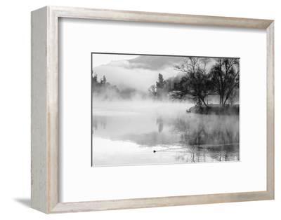 Fog on the Lake 2-Sally Linden-Framed Photographic Print