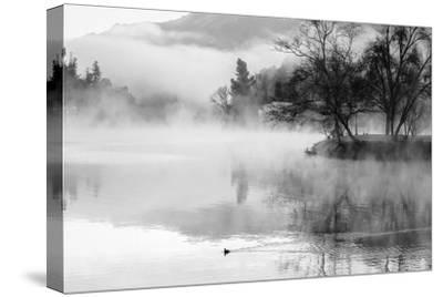 Fog on the Lake 2-Sally Linden-Stretched Canvas Print