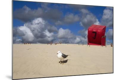 Red Beach Chair in the Dunes, Gull-Uwe Steffens-Mounted Photographic Print