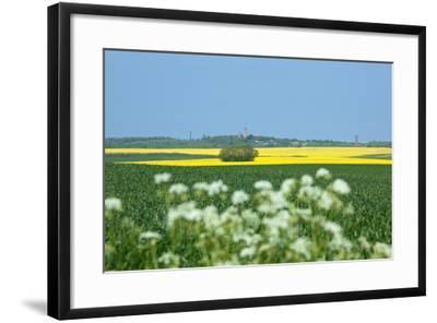 The Baltic Sea, RŸgen, Cape Arkona, Lighthouses, Summer-Catharina Lux-Framed Photographic Print