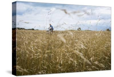 Boy with Bicycle in Grain Field-Ralf Gerard-Stretched Canvas Print