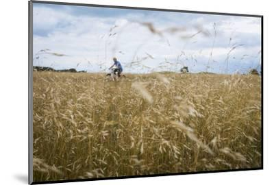 Boy with Bicycle in Grain Field-Ralf Gerard-Mounted Photographic Print