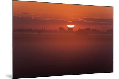 Austria, Burgenland, Neusiedlersee (Lake), Fertš National Park, Sunrise-Rainer Mirau-Mounted Photographic Print