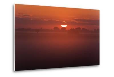 Austria, Burgenland, Neusiedlersee (Lake), Fertš National Park, Sunrise-Rainer Mirau-Metal Print
