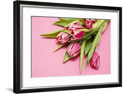 Bouquet, Tulips, Pink, Table-Sebastian Scheuerecker-Framed Photographic Print