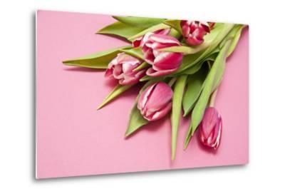 Bouquet, Tulips, Pink, Table-Sebastian Scheuerecker-Metal Print
