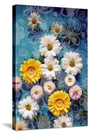 Blossoms in Water with Hand Drawing Floral Ornaments, Photographic Layer Work-Alaya Gadeh-Stretched Canvas Print