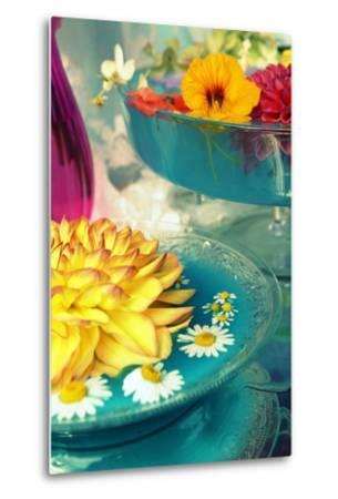 Table Decoration, Coloured Blossoms and Water Bowl-Alaya Gadeh-Metal Print