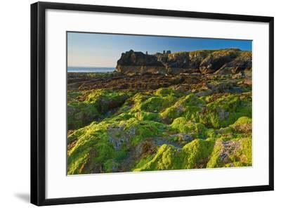 Ireland, Wicklow Coast-Thomas Ebelt-Framed Photographic Print