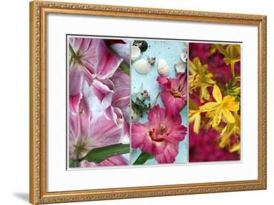 Tryptich from Gladiolus and Different Lilies-Alaya Gadeh-Framed Photographic Print