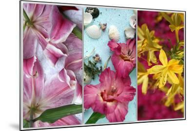 Tryptich from Gladiolus and Different Lilies-Alaya Gadeh-Mounted Photographic Print