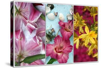 Tryptich from Gladiolus and Different Lilies-Alaya Gadeh-Stretched Canvas Print