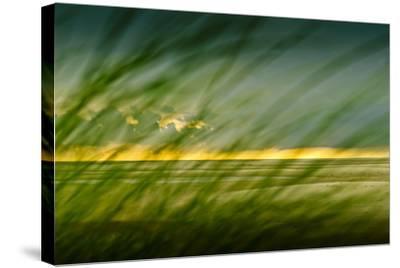 Germany, Schleswig-Holstein, Amrum, Sandy Beach, Sandbank, Kniepsand-Ingo Boelter-Stretched Canvas Print